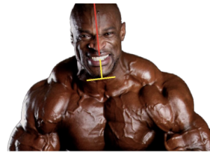 Ronnie Coleman symmetry