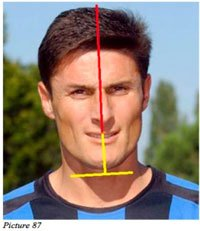 balanced face zanetti