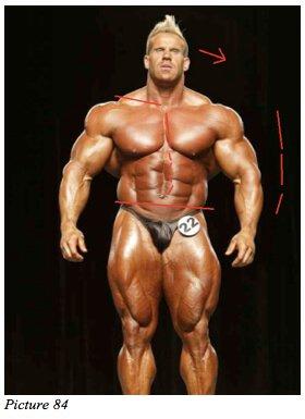 bodybuilder unbalanced